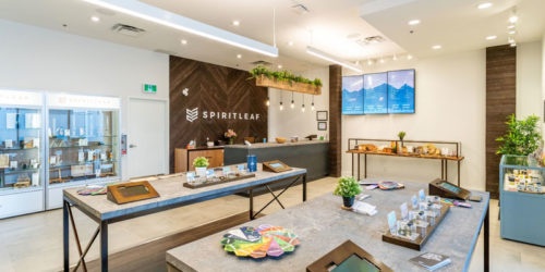Canadian recreational cannabis franchise system, Spiritleaf has announced the resumption of franchise sales activity in Saskatchewan.