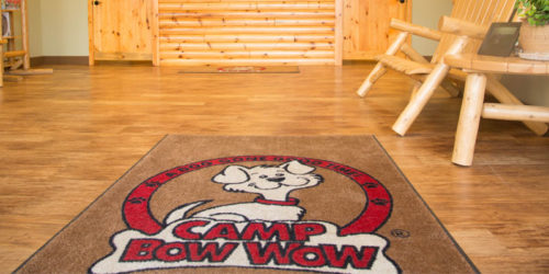 Dog daycare franchise system Camp Bow Wow unveils plans for continued expansion in Canada.