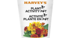 Recently launched, Harvey's Canada's Grow A Plant program will see plant kits substituted for plastic toys of the company's kid's meals.