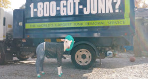 1-800-GOT-JUNK? has released a list of the 10 weirdest items collected by its teams, including a goat statue wearing jeans and a leather jacket.